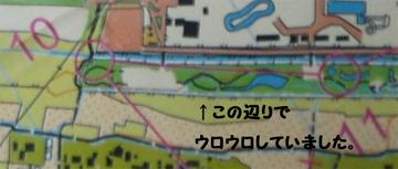 オリエンテーリングKASEI地図