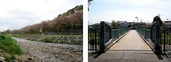 金山緑地公園・松柳橋