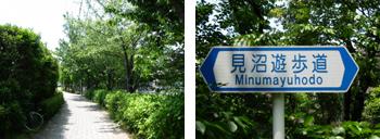 見沼遊歩道
