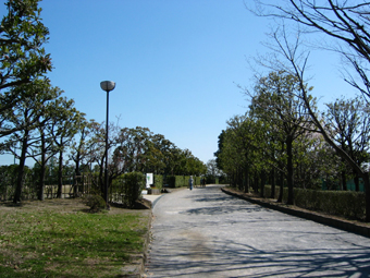 そうか公園ジョギングコース