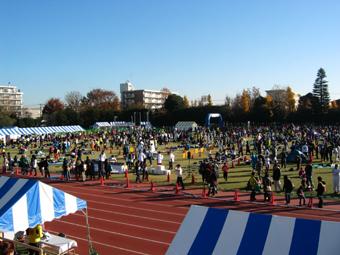 The field before the race